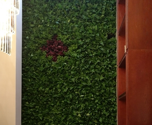 样板间绿植墙