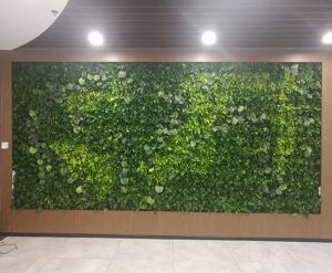 软件园植物墙