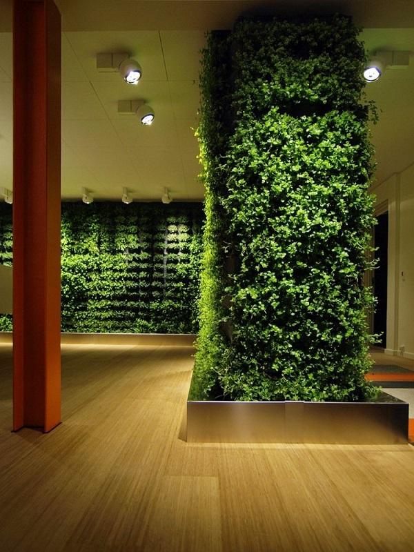 大堂立体绿化