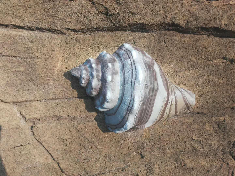 水泥雕塑-海螺