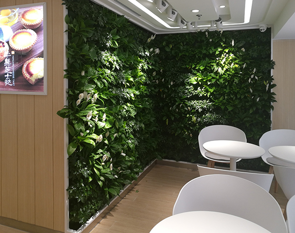 开发区工装绿植墙