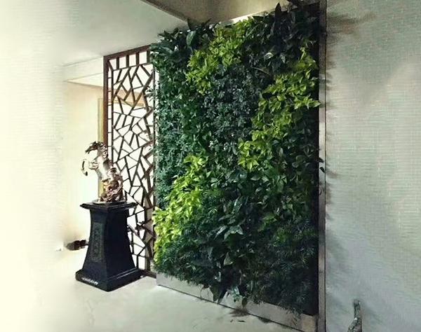 大连植物墙