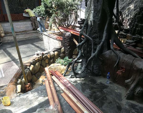 开发区水泥树根