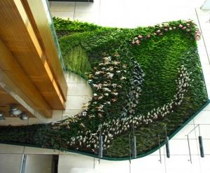商场立体绿化