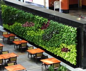 酒店立体绿化