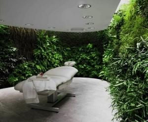 休闲场所立体绿化