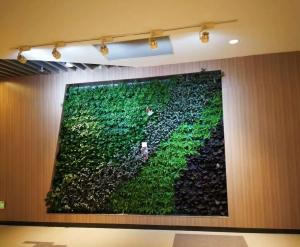 吉林绿植墙