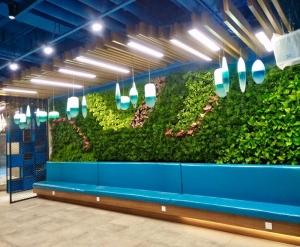 吉林墙壁绿化