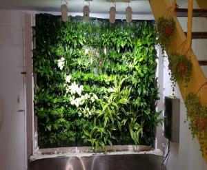 吉林私家植物墙装修