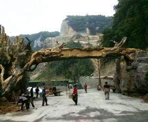 仿木景观门