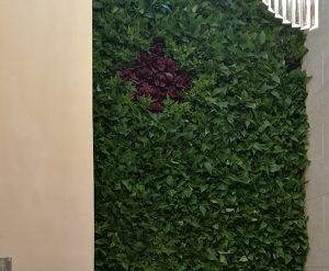 大连植物墙设计
