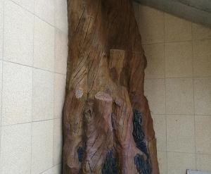 大连假树制作