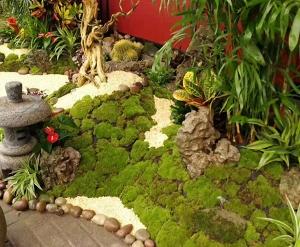 大连金州庭院绿化