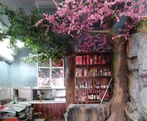 大连樱花树
