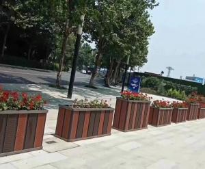 大连市政花箱