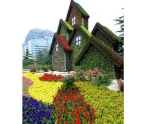大连房屋绿化